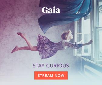Gaia Brand BB336x280 v1