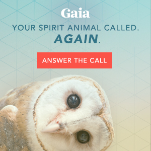 Gaia - SG - Streaming Mindfulness - rock spire
