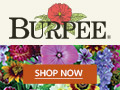 Click Here to Support The Garden Oracle with Your Purchases from Burpee - Live Plants, Seeds, Vegetables, Flowers and Horticultural Supplies since 1876!