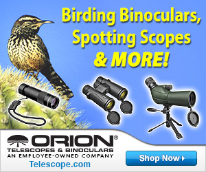 Elevate your birding adventures to the next level by bringing the birds up close!