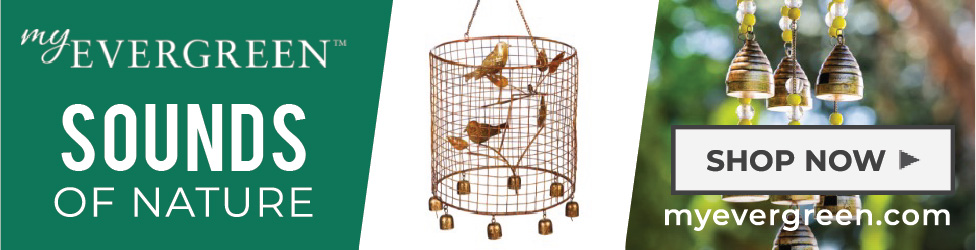 Welcome to MyEvergreen: Wind Chimes to Decorate Your Yard and Garden.
