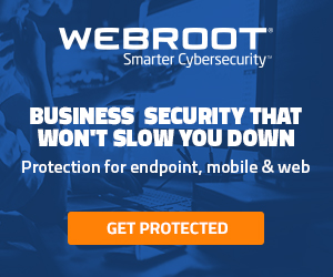 Webroot GB Business Banner
