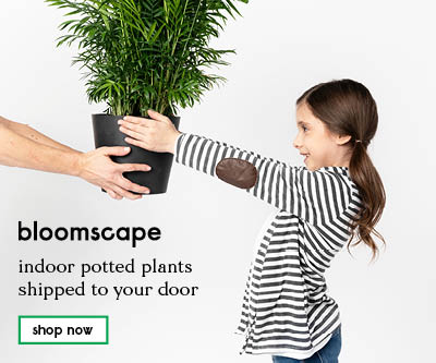 Bloomscape, Send Them a Gift That Grows