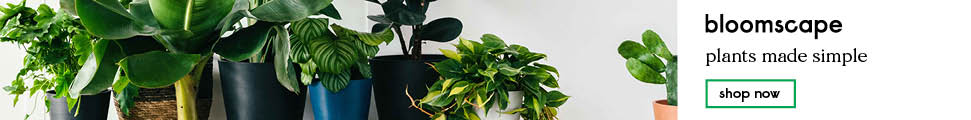 Bloomscape, Indoor Potted Plants Shipped to Your Door