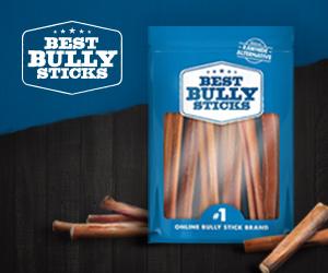 BestBullySticks | The #1 Online Bully Stick Brand | SHOP NOW!
