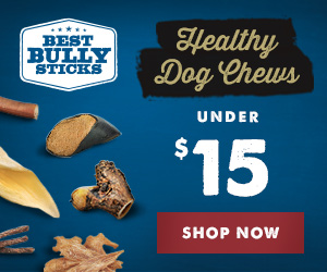 Healthy Dog Chews Under $15
