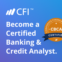Credit Analyst Program
