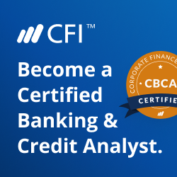 Credit Analyst Program