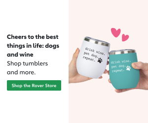 Shop tumblers and more